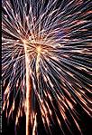 001_031_B_D60_VR55-200_Iso200_Tpod_3Jul10_Fireworks_sgc684.jpg