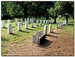 A_FIELD_OF_THE_GETTYSBURG_DEAD_HOLLYWOOD_CEMETERY_RICHMOND_.jpg
