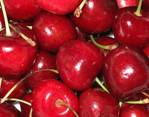 237905Cherries_for_competition.jpg
