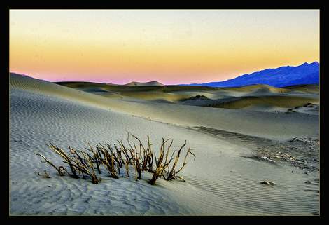 Sand Dune of Death Valley