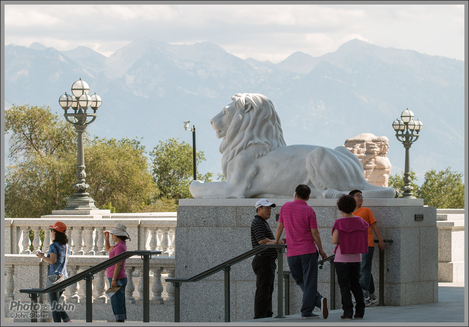 The Lion & the Wasatch - Canon EOS 70D