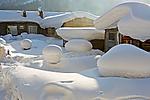 Snowtown7.jpg