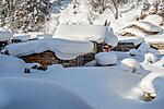 snowtown6.jpg
