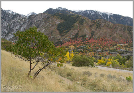 Salt Lake City Fall Colors
