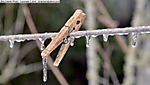9_Y_225_D5200_VR18-200_I-640_TPod_29Jan14_CView_yard_Clothespin_Ice_sgc699.jpg