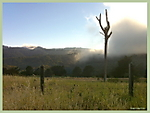 Crystal_Springs_reservoir_Fog.jpg
