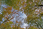 DSC_6945_redigerad-3.jpg
