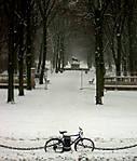Winter-in-Berlin.jpg