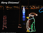 5_H_057_D300_VR18_I-200_Tpod_15Dec13_DeFuniak-Springs_Chipley-Park_Christmas-lights_H_sgc699.jpg