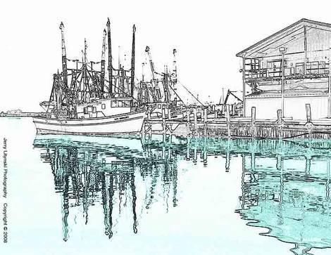 Shrimp boats at the docks