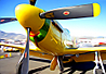 P-52-Nose-OP-7x10-96.jpg