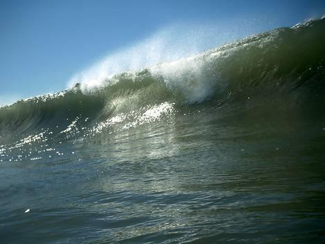 Mist on Wave