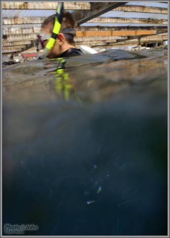 Olympus Stylus Tough-8010 Underwater Camera