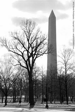 A late winter day in Washington DC