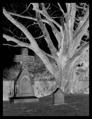 newport cemetary inverted
