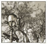 0Street_lamp_photosig_copy.jpg
