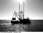 234880000_F_35-Cr_N90s_24-50mm_Su100_11Nov03_Sun-Boat-BW-503uc.JPG