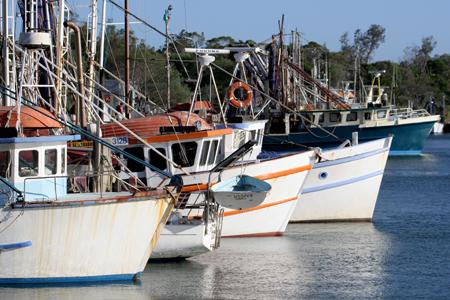 242049Fishing_Boats