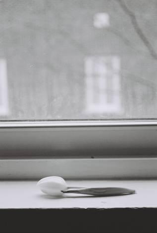 Flower by Window