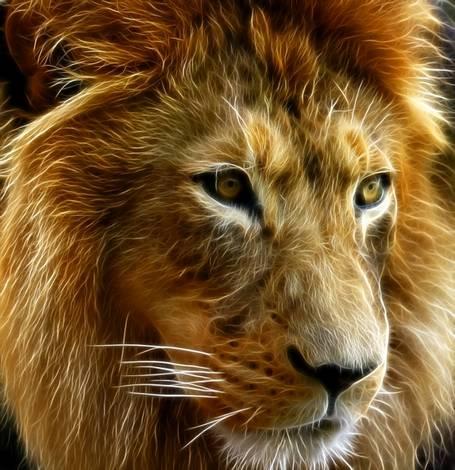 Electro-Lion