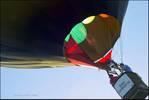 239453balloon1l.jpg