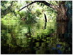 Lake_Tabeau.jpg