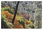 PINNACLES_Unsharpmask_Autumn.jpg
