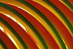 Slinky_Shot_2.jpg
