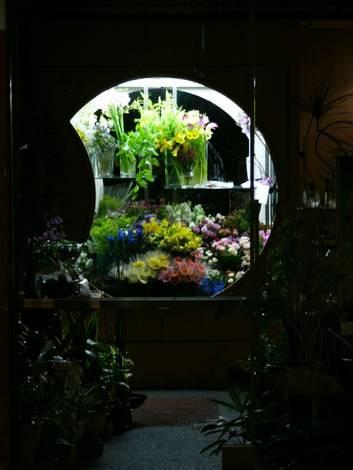 Window display in floral shop