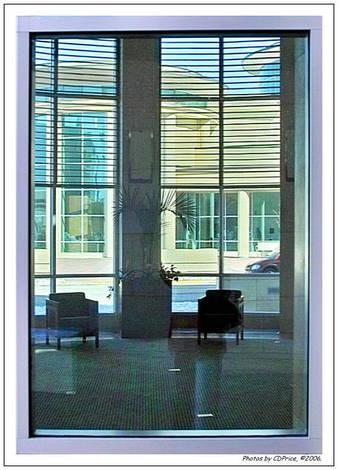 Rotunda Windows