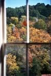 244621Kitchen_Window.jpg