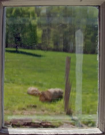 Wyeth's Window
