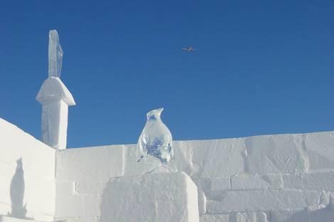 Ice bird and metal bird