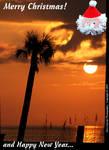 000_C_317_Fuji-S5_VR55_Iso640_14Dec07_Sunset-Santa_sc511.jpg