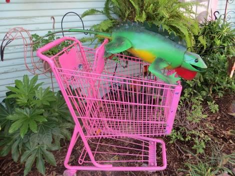 Iguana at Swankyville