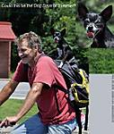 0_L_087_D5000_VR18_Iso400_CView_Bike_Dog_sgc699.jpg