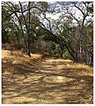 Almaden_quicksilver_park_path.jpg