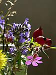 November-Bouquet.jpg