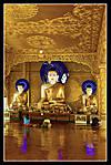 DSC_1693buddha.jpg