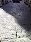 shadows6.jpg