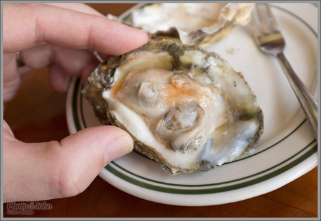 Fresh Oyster With Horseradish & Tabasco