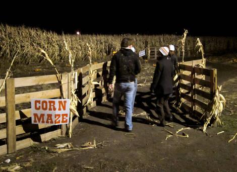 Corn Maze  - Canon S90 ISO 1600 Sample