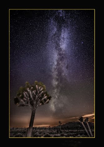 Milky Way of Joshua Tree NP ~ July 2014