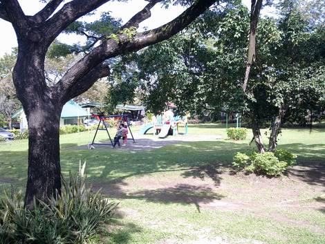 Random shots of parks