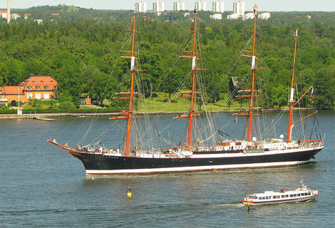 The Sedov