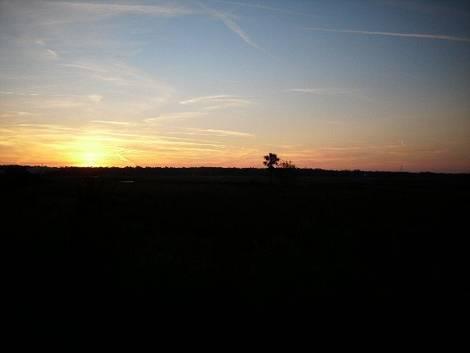 Northeast Florida At Sunset