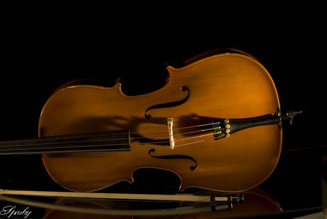 Quarter_Size_Cello-7779