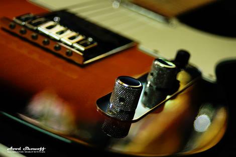 Fender Telecaster Standard