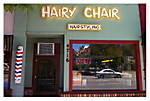 Hairy_chair.jpg